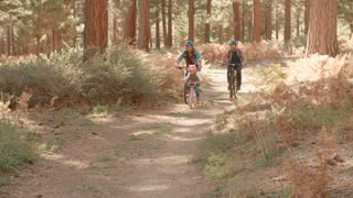 Male couple cycling with daughter in forest, front view, shot on R3D