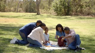 Multi generation black family unpacking picnic in a park