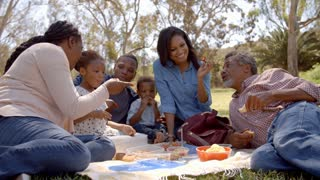 Multi generation family black family eating picnic in a park