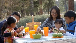 Parents and kids sharing food at a picnic table, side view