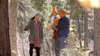 Pregnant woman, husband and young daughter hike in a forest
