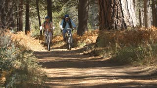 Senior couple cycling on forest trail, slow motion