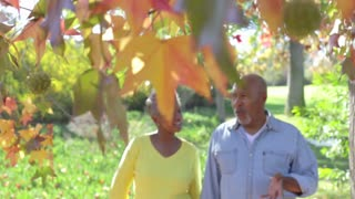 Senior Couple On Romantic Walk In Countryside Together