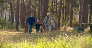 Senior couple walking with grandchildren in the countryside