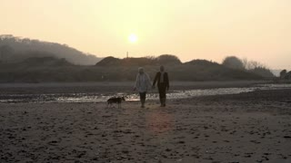 Senior Couple With Dog Walking On Beach In Slow Motion