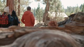Six friends walk on forest path towards log cabin, back view