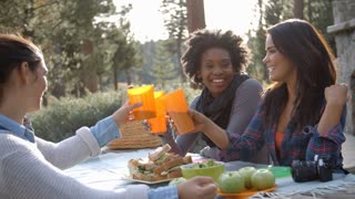 Three female friends at a picnic table making a toast