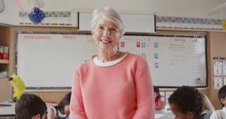 Tilt shot of senior female school teacher in front of class