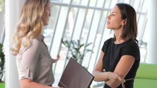 Two Businesswomen Discussing Document In Office