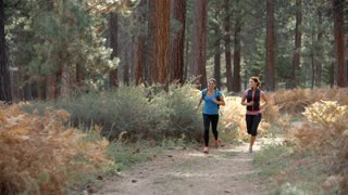 Two young women running in a forest