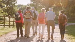 Rear View Of Group Of Senior Friends Hiking In Countryside