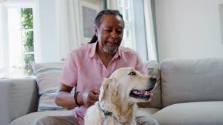 Senior Man Sitting On Sofa At Home With Pet Labrador Dog