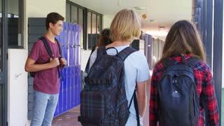 Teenage classmates stand talking in high school hallway