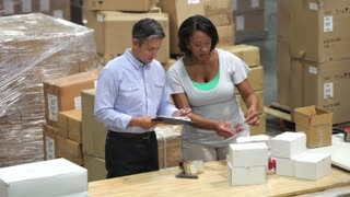 Worker And Manager Checking Goods Before Dispatch