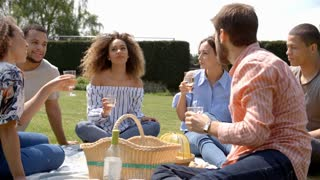 Young adult friends at a picnic drinking and talking
