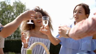 Young adult friends making a toast at a picnic, close up