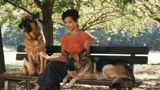 11of15 People, pets, dog sitter with alsatian dogs in park