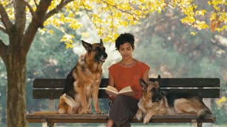 12of15 People, pets, dog sitter with alsatian dogs in park