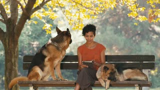 13of15 People, pets, dog sitter with alsatian dogs in park