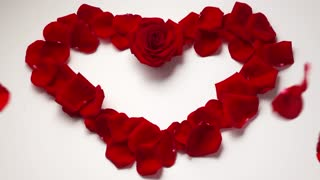 14 Valentine Day Heart Shape With Rose Petals Slowmotion 120p