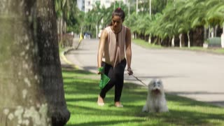 3 Woman Cleaning Droppings Of Her French Poodle Dog