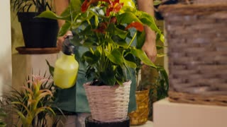 7of20 people in flower shop with florist and customer