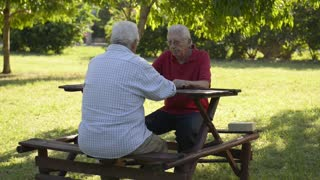 Active retired people, best friends and leisure, group of old men having fun and playing chess game at park