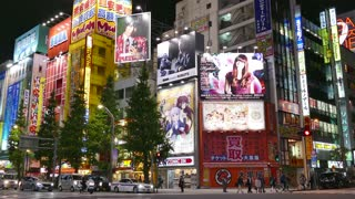 Akihabara district, Tokyo, Japan, Asia. View of the Japanese city with modern buildings, neon lights, signs, billboards, advertising. Famous tourist spot, Asian travel attraction, shops, stores