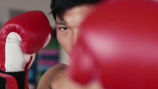 Athlete training, working out, exercise in sport gym and fitness club, boxing and martial arts for wellness and wellbeing. Portrait of strong asian young man punching, fighter looking at camera