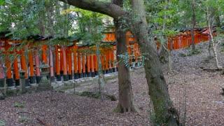 Fushimi Inari Shrine or Fushimi Inari Taisha, a Shinto shrine in southern Kyoto, Japan, Asia. Japanese monument, Asian landmark famous for its thousands of vermilion torii gates