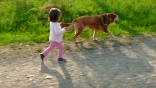 Happy Little Girl Having Fun Walking Dog Pet In Countryside