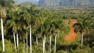 Hills Landscape CountrysideAnd Mountains In Vinales Cuba
