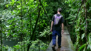 Man People Walking Trekking Hiking Hanging Bridge Jungle Rainforest Adventure