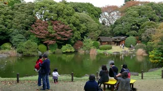 National Museum, Tokyo, Japan, Asia. Asian people, families visiting city park in fall season to see autumn foliage on trees. Japanese culture, tradition, lifestyle, natural beauty, nature, landscape