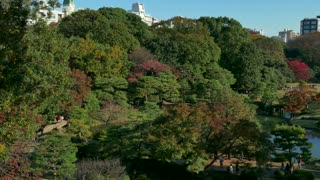 Rikugien Garden, Tokyo, Japan, Asia. City parks, gardens in fall season, autumn foliage on trees. Japanese culture, tradition, lifestyle, famous spot for tourists, natural beauty, nature, landscape