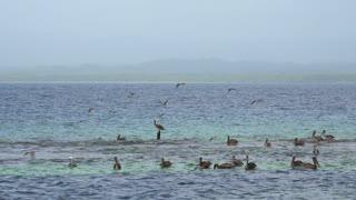 San Blas Islands Panama Central America-4
