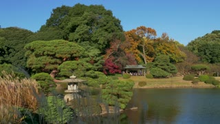 Shinjuku Gyoen National Garden, Tokyo, Japan, Asia. City park in fall season, autumn foliage, trees. Japanese culture, tradition, lifestyle, famous spot for tourists, natural beauty, nature, landscape