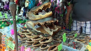 Alligator heads for sale. Stall at the flea market inside the French Market in the French Quarter of New Orleans, Louisiana, United States of America