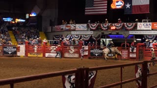 American cowboy doing riding bull at rodeo in Cowtown Coliseum, arena in the stockyards of Forth Worth, Texas, United States of America. Man and animal at show