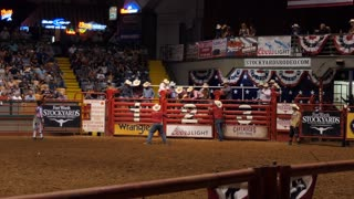 American cowboy riding bull at rodeo in Cowtown Coliseum, arena in the stockyards of Forth Worth, Texas, United States of America. Man and animal at show