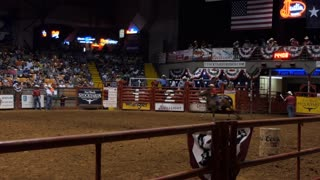 American cowgirl doing barrel racing at rodeo in Cowtown Coliseum, arena in the stockyards of Forth Worth, Texas, United States of America. Woman performing at show