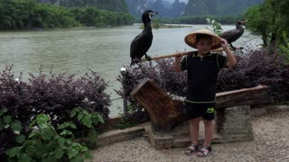 Chinese boy posing with cormorants for souvenir picture, Asian child on holiday. Natural landscape and Li River near Xingping, between Yangshuo and Guilin, Guangxi, China, Asia