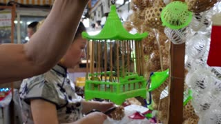 Chinese man holding a cage with cricket sold as a pet in a traditional market of Shanghai, China, Asia. Asian shop selling animals, wildlife, exotic insects