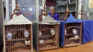 Chinese man in shop selling Asian animals, fauna, exotic birds as pets in Shanghai, China, Asia