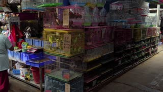 Chinese people in a shop selling Asian animals, wildlife, exotic birds as pets in a traditional market of Guilin, China, Asia