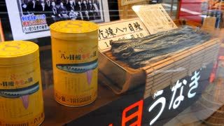 Japanese shop selling traditional medical remedy extracted from lamprey fish. Store with medicine, treatment and therapy in Tokyo, Japan, Asia