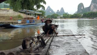Old Chinese fisherman on bamboo draft posing with cormorants on Li River near Xingping, between Yangshuo and Guilin, Guangxi, China, Asia