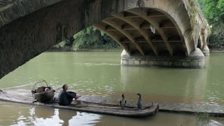 Old Chinese fisherman sitting with cormorants on bamboo draft under bridge on Li River near Xingping, between Yangshuo and Guilin, Guangxi, China, Asia
