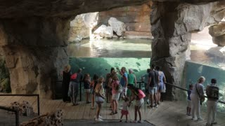 People Watching Tropical Fishes In Bioparc Of Valencia
