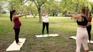 Pregnant Women Doing Yoga Respiration Exercise In Park